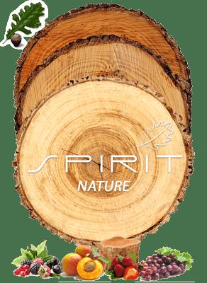 Imagen Spirit NATURE