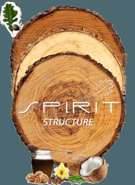 Imagen Spirit Structure