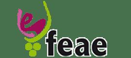 Federación Española de Asociaciones de Enólogos