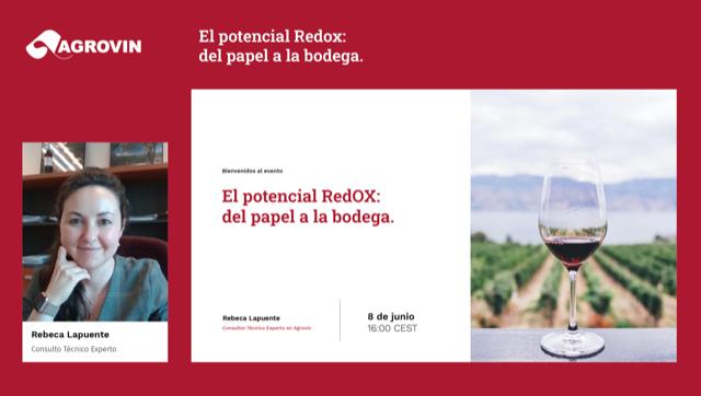 Webinaire: Le potentiel Redox: du papier à la cave